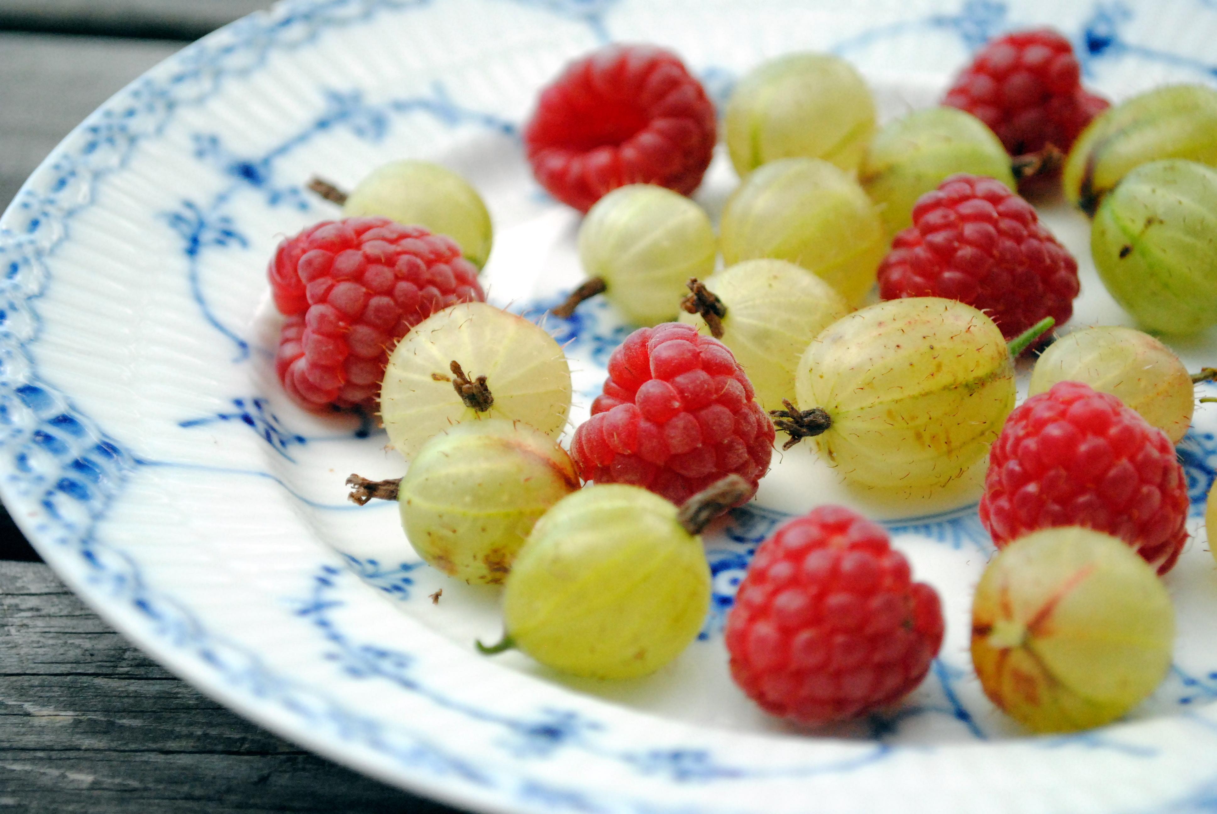Stikkelsbær og hindbær fra Din Baghave