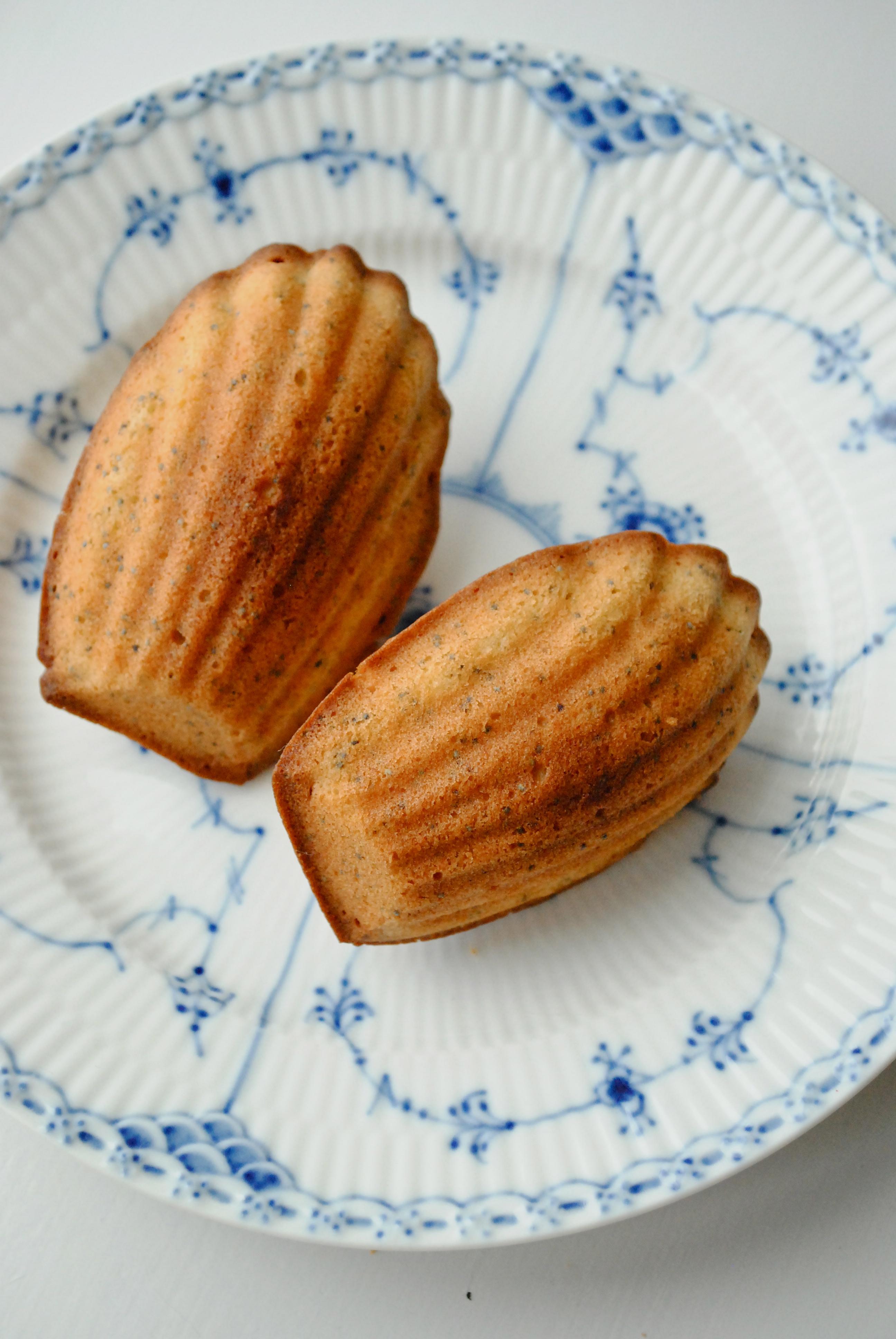 Madeleinekager med citron og birkes